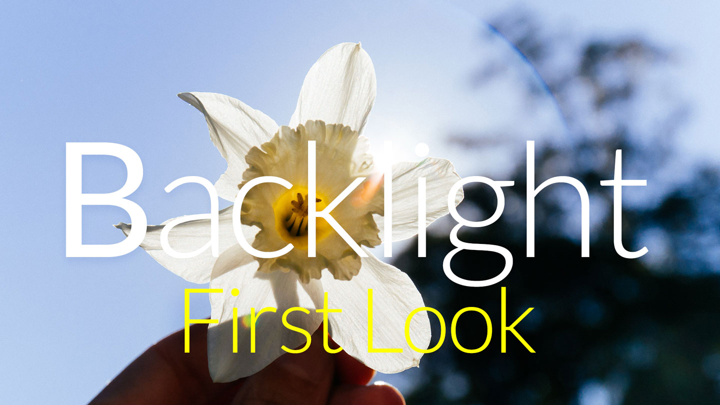 Backlight, First Look